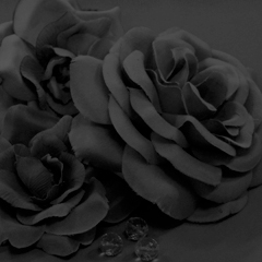 Col 01 - Black