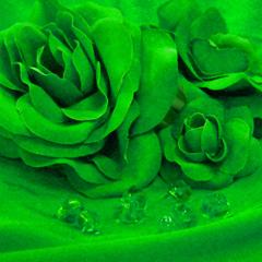 Col 33 - Emerald