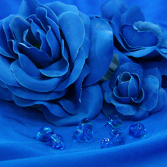 Col 57 - Royal Blue *