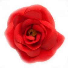 Mini rose Tomato