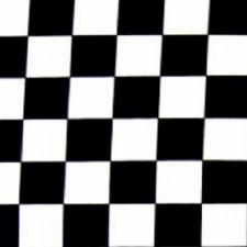 Ternet lycra Black/white