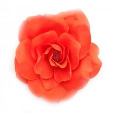 Wild rose Flamered