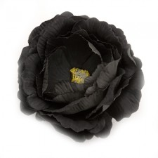 English rose Black ---