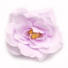 Wild rose Syren