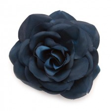 Big rose Midnight Sky