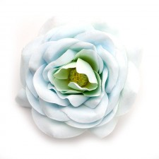 Big rose Light Iceblue