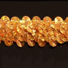 Gold hologram 20 mm