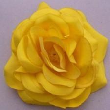 Big rose Summergold