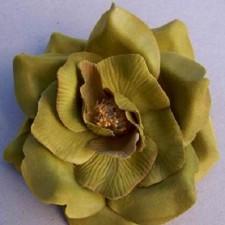 Wild rose Støvet grøn