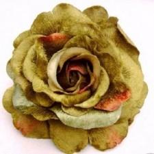 Velvet rose Støvet limegrøn