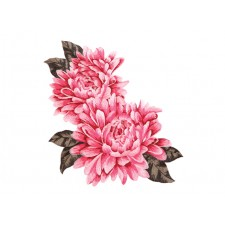 Chrissy Embroded flower Pink ---
