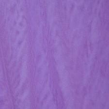 Fine mesh Violet