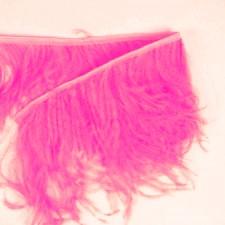 Fjerfryns Fuchsia Pink