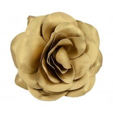 Big rose Gold
