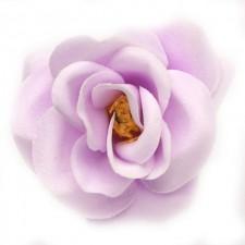 Mini rose Syren