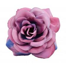 Big rose Fuchsia pink